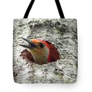 Red-bellied Woodpecker 02 Tote Bag by Al Powell Photography USA