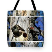 Red Bellied Woodpecker Harassed By A Starling Tote Bag