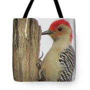 Red-bellied Woodpecker II Tote Bag