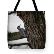 Red Bellied Woodpecker No 2 Tote Bag