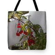 Red Berries On A White Fence Tote Bag