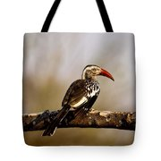 Red-billed Hornbill Tote Bag