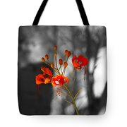 Red Bird Of Paradise Tote Bag