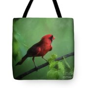 Red Bird On A Hot Day Tote Bag