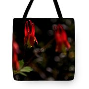 Red Blaze Tote Bag