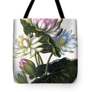 Red, Blue, And White Lotus Flowers Tote Bag