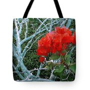 Red Bougainvillea Thorns Tote Bag