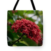 Red Bouquet 9 Tote Bag