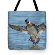 Red-breasted Merganser Landing Tote Bag