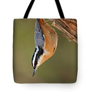 Red-breasted Nuthatch Upside Down Tote Bag