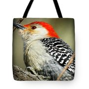 Red-breasted Woodpecker 1 Tote Bag