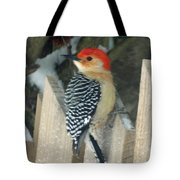 Red Breasted Woodpecker On Fence Tote Bag