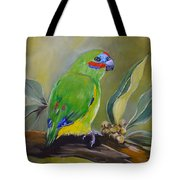 Red Browed Fig Parrot  Tote Bag