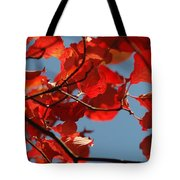 Red Brown And Blue Tote Bag