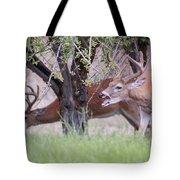 Red Bucks 5 Tote Bag