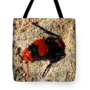 Red Burrowing Insect Tote Bag