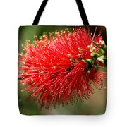 Red Burst Tote Bag by Valeria Donaldson