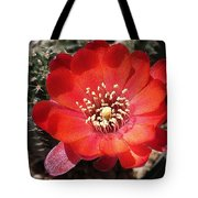 Red Cactus Flower Tote Bag