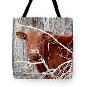 Red Calf  Hideaway Tote Bag