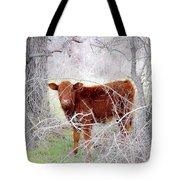 Red Calf In Winter Brush Tote Bag