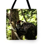Red-capped Mangabey Tote Bag