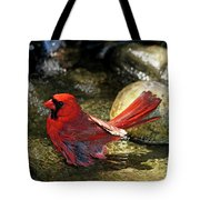 Red Cardinal Bathing Tote Bag