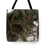 Red Cardinal II Tote Bag