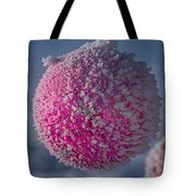 Red Christmas Decoration With Frost In Winter Tote Bag