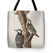 Red-cockaded Woodpecker Tote Bag