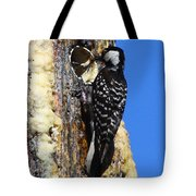 Red Cockaded Woodpecker Mother Feeding Tote Bag