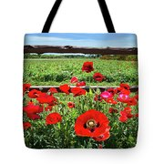 Red Corn Poppies At The Fence Tote Bag