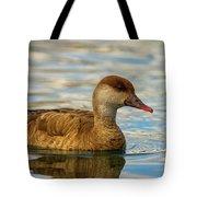 Red-crested Female Pochard Duck, Netta Rufina Tote Bag