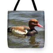 Red-crested Pochard Tote Bag