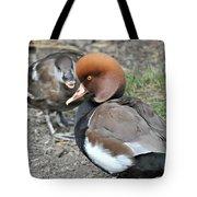 Red Crested Pochard Duck Tote Bag