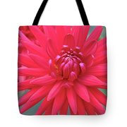 Red Dahlia Delight Tote Bag