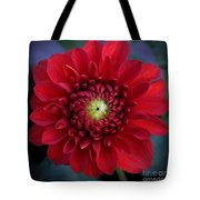 Red Dahlia Square Tote Bag