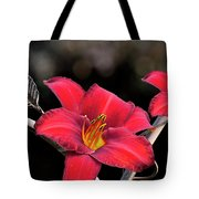 Red Day Lilies Tote Bag