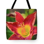 Red Daylily Tote Bag