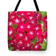 Red Dianthus Tote Bag