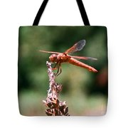 Red Dragonfly II Tote Bag