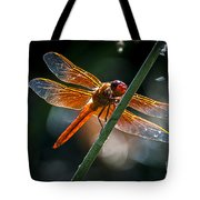 Red Dragonfly On Reed Tote Bag