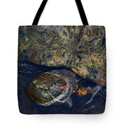 Red Eared Slider Turtle Tote Bag