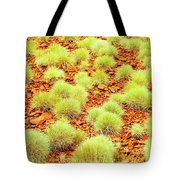 Red Earth And Spinifex 2am-111716 Tote Bag