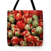 Red Elegant Blooming Tulips  Tote Bag