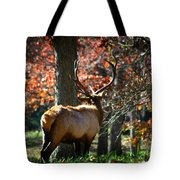 Red Elk Tote Bag