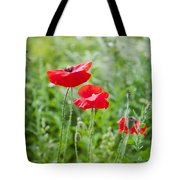 Red Field Poppies Tote Bag