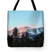 Red Flagging Tote Bag