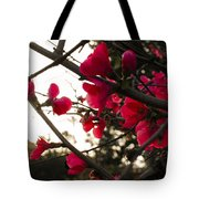 Red Flowers At Sunset Tote Bag