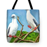 Red Footed Booby #255, Tote Bag