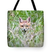 Red Fox Baby Hiding Tote Bag